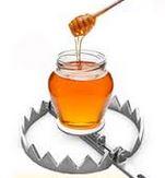 honeypot1